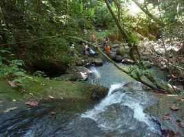 bassin 1 riv deshaies, B terre , cote sous le vent, guadeloupe