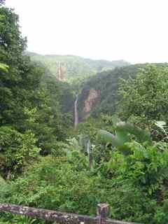 chutes du carbet foret humide écosysteme tropical antilles