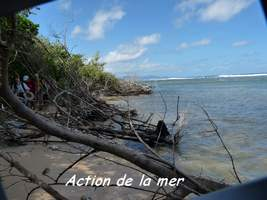 action mer, TGT J2, grande terre, guadeloupe