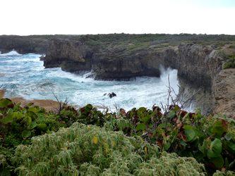 anse belle rose Trace des falaises Anse bertrand Guadeloupe