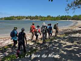 baie moule, TGT4, grande terre, guadeloupe