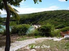 baie olive , TGT5, grande terre, guadeloupe