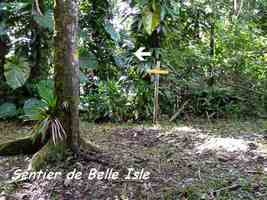 balisage, trace contrebandiers, basse terre nord, Guadeloupe