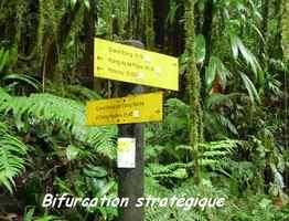 bifurcation 2, trace des étangs