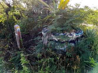 bifurcation trace falaise anse bertrand Guadeloupe