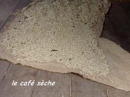 le café sèche grivelière
