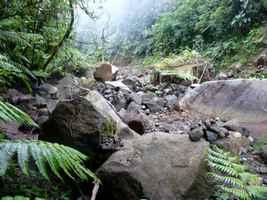 chutes carbet, éboulis, basse terre sud, guadeloupe