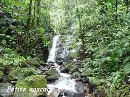cascade autre, chutes moreau, goyave, basse terre notd, guadeloupe