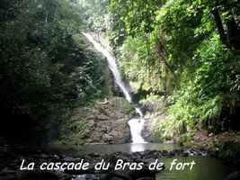 cascade bras de fort, goyave, basse terre nord, guadeloupe