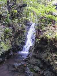 cascade, trace des étangs