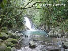 cascade paradis, Grivelière