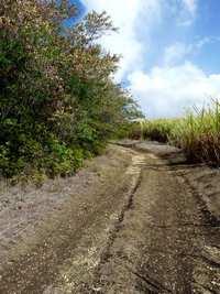 chemin, beautiran, petit canal, grande terre, guadeloupe