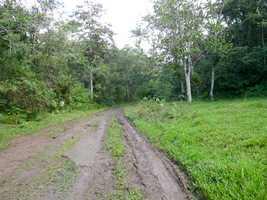 chemin grivelière