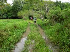 chemin inondé, ravine NW Moule