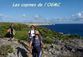 copines, TGT3, grande terre, guadeloupe