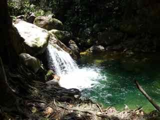 balade cascade rivière rouge foret humide écosystème tropical
