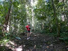 Montée, Galbas, tete allègre , basse terre nord, Guadeloupe