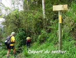 Départ du sentier, Gros Figuier, Piton de Bouillante