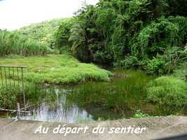 Départ Sentier des Sources, Marie Galante
