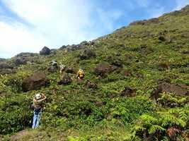 départ, Trace géologues, Soufrière, basse terre Guadeloupe