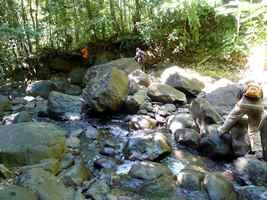 descente Rivière deshaies