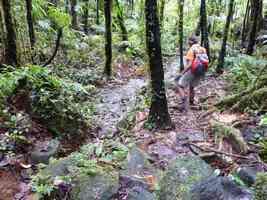 descente Trace des étangs