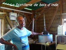 balade terre de bas, distillation, les saintes, iles guadeloupe, antilles