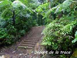 escalier, départ, chutes moreau, goyave, basse terre nord, guadeloupe