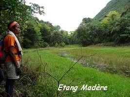étang Madère, trace des étangs