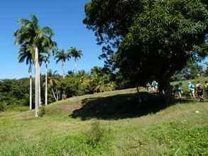 paysage savane, TGT1, grande terre