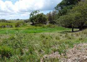 mare castex, beautiran, petiti canal, grande terre, guadeloupe