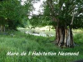 Habitation Nesmond, Capesterre, Marie Galante