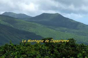 montagne de capesterre, vue, madeleine, basse terre, guadeloupe