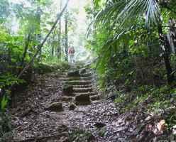 Montée, baille argent, tete allègre , basse terre nord, Guadeloupe