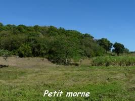 morne, TGT, grande terre, Guadeloupe