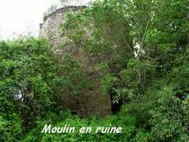 Moulin Richelieu, Poyen