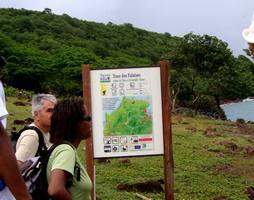 trace jaune, balisage , terre de bas, Guadeloupe