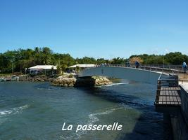 passerelle, moule, TGT4, grande terre, guadeloupe