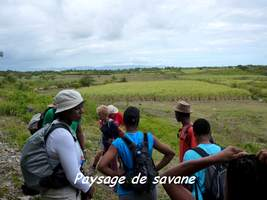 savane, TGT4, grande terre, guadeloupe