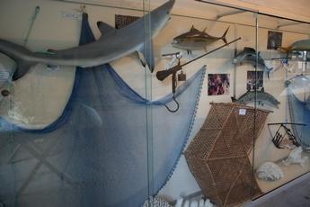 pêche musée fort terre de haut guadeloupe
