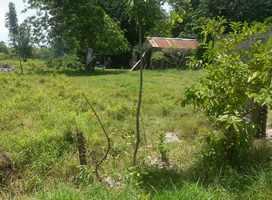 habitations, pointe à retz, morne à l`eau, grande terre, guadeloupe
