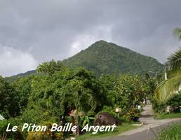 Piton B Argent, basse terre nord, guadeloupe