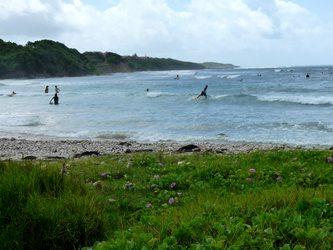 plage Helleux ste anne Guadeloupe
