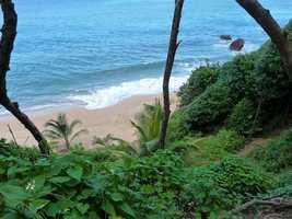 plage, sentier, tillet, basse terre, guadeloupe