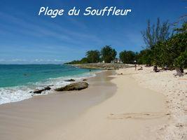 plage port louis, TGT, grande terre, guadeloupe