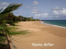 Pointe Riflet, Littoral Deshaies