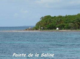pointe saline, littoral gosier, saline-pt havre