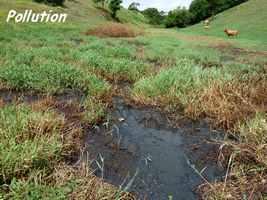 polution, ravine NW moule