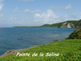 Pointe de la Saline, Petit Havre