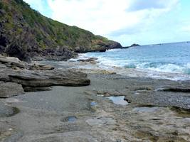 trace grand nord Désirade littoral, guadeloupe